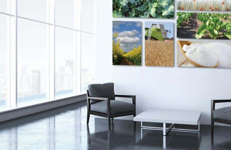 large format canvas design